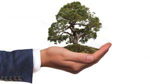 zoldovezet-kornyezetvedelem